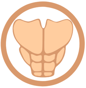 Six pack tutorial is one of the top niches for online business.