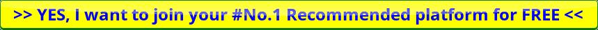 Alidropship custom store review - An alternate